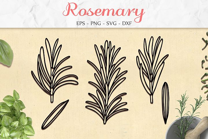 Rosemary Set svg png dxf eps - Rosemary Herb Paper Cut