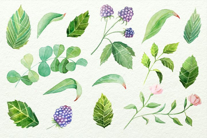 Watercolor Floral DIY Set - Free Design of The Week Design 4