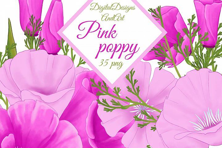Poppy clipart