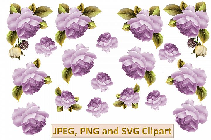 Purple Roses Clipart and printable kit PNG, SVG, JPEG CU