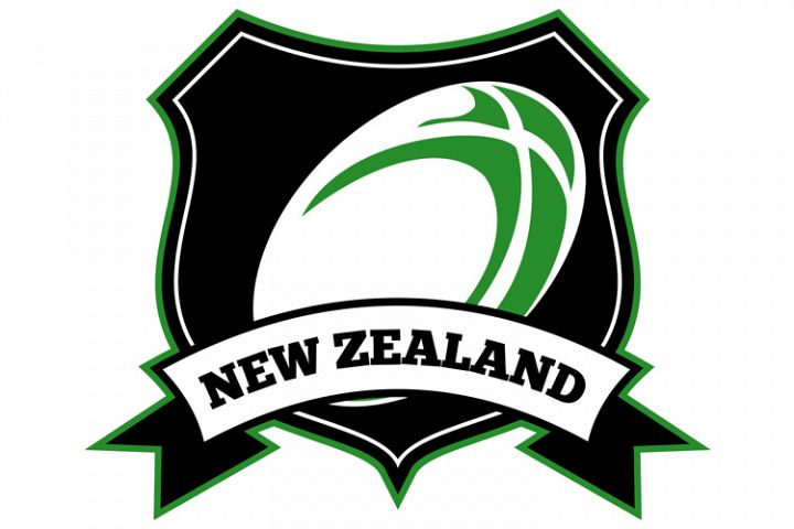 new zealand rugby ball shield
