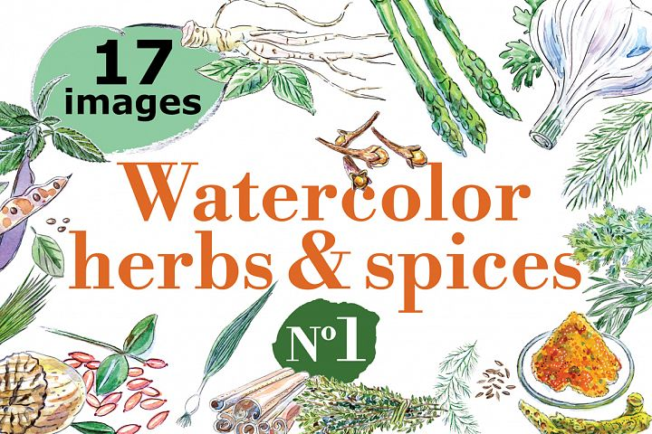 Watercolor spices vector set-1