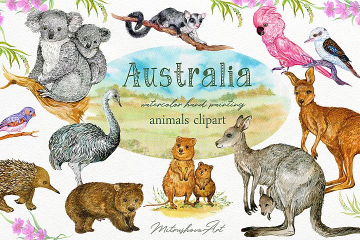 Animals Australia Watercolor