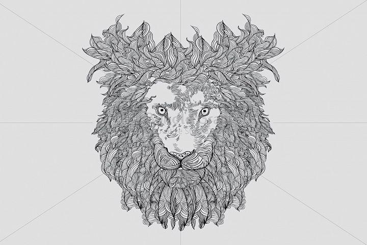 Lion - Wild Animal