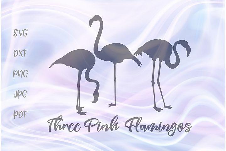 Three Flamingos Silhouettes Cut File SVG DXF PNG JPG PDF