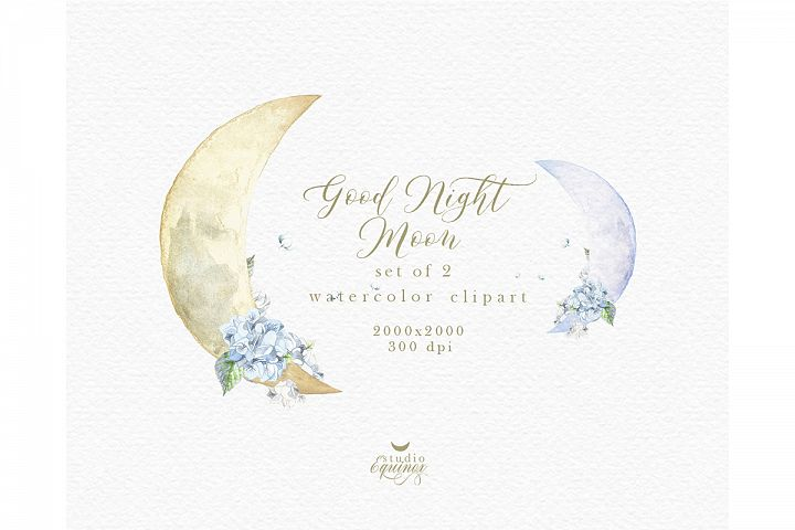 Watercolor Whimsical New Moon with Hydrangea