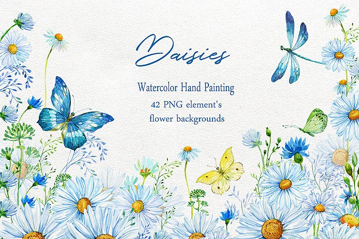 Daisy Clipart, Chamomiles Watercolor Hand Painting ,