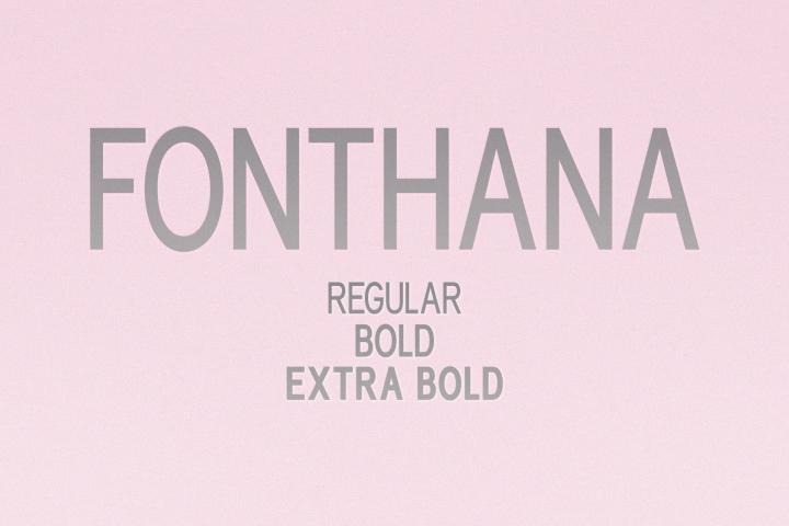 Fonthana l 3 Style Classy Font