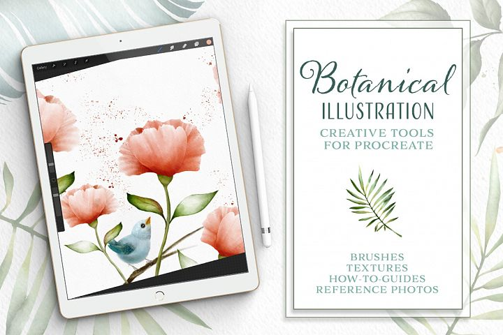 Botanical Illustration Toolkit for Procreate App