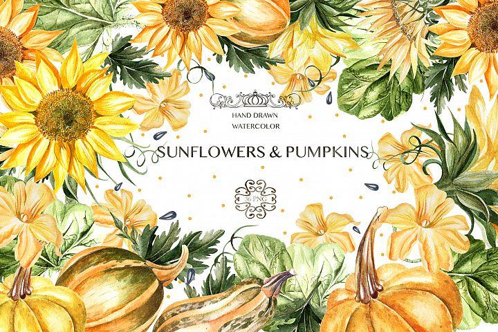Watercolor Sunflower & Pumpkins
