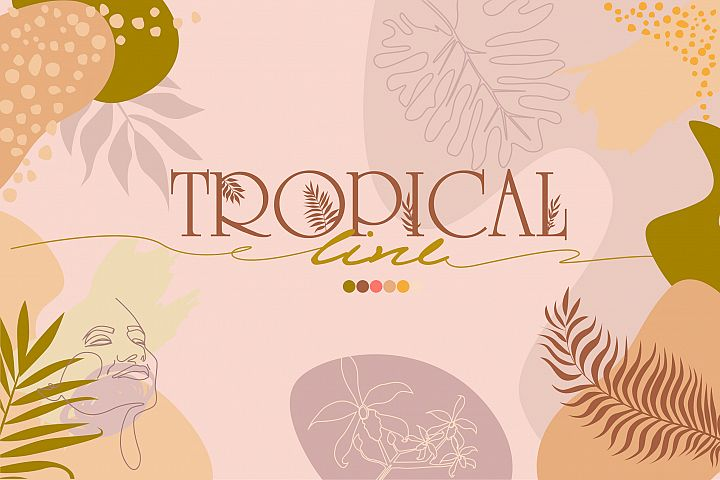 Tropical line collection