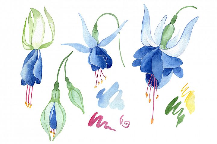 Fuchsia blue watercolor png