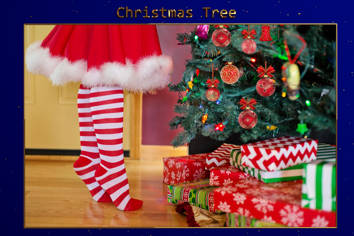 XMAS - Christmas Tree Lr Presets