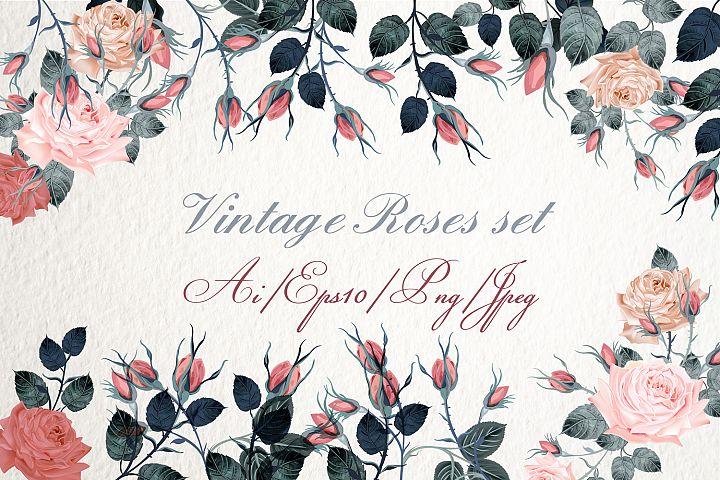 Collection of vintage vector roses in classic watercolor