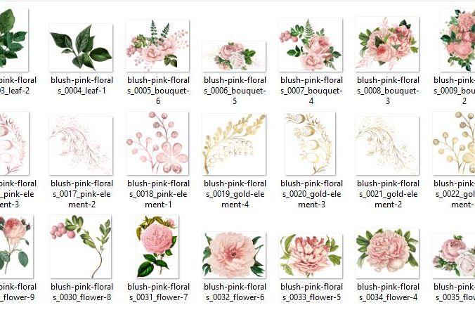 Blush Pink Wedding Floral Clipart - Free Design of The Week Design0