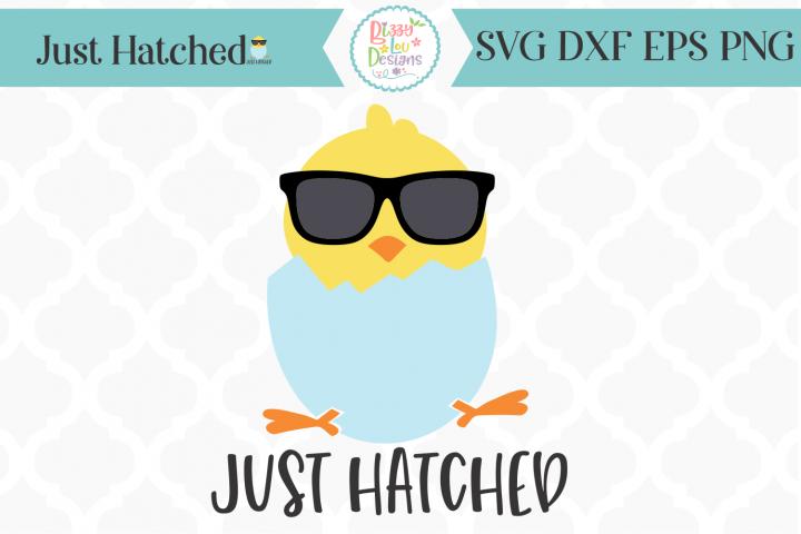 Just Hatched Chick SVG I Newborn SVG I Easter SVG I Baby SVG