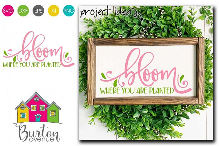 Bloom Where You are Planted SVG file for Spring