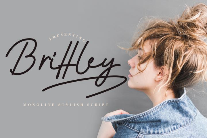 Brittley Monoline Font