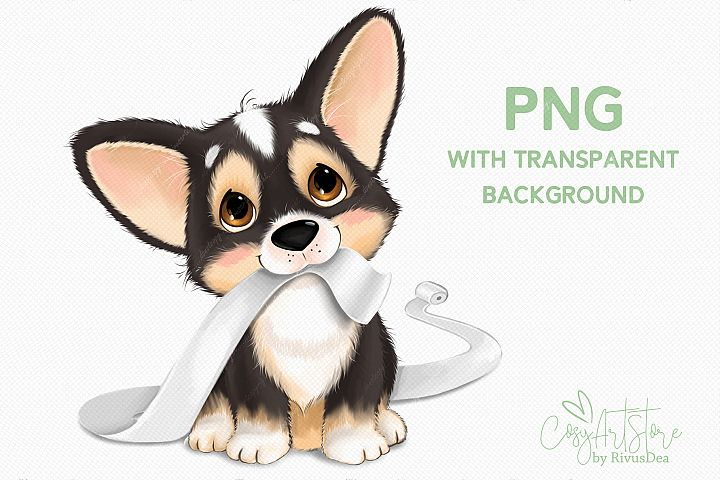 Corgi dog PNG clipart. Corgi puppy with the toilet paper.