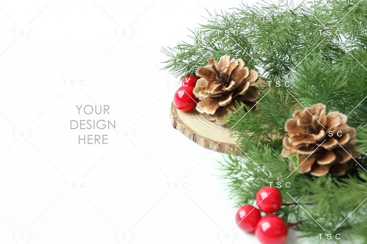 Christmas Stock Photo / Pine Cone / Red / Green