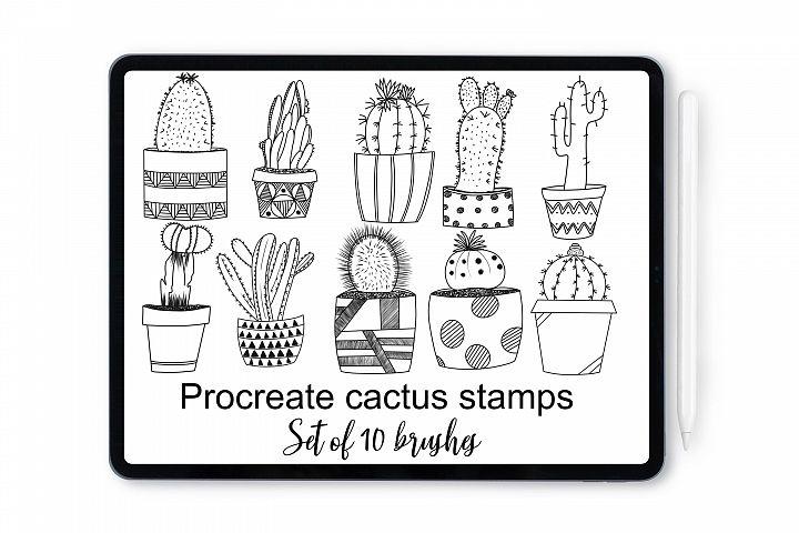 Procreate cactus stamp brushes for iPad and iPad Pro