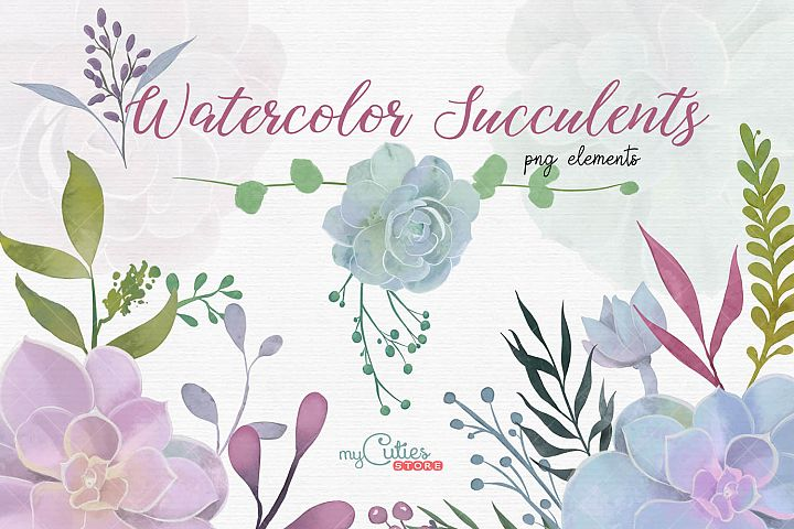 Succulents watercolor floral and botanical png elements