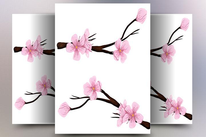 Sakura Flower Vector
