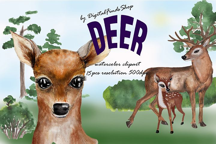 Big eye deer clipart, Deer watercolor clipart, baby deer cli