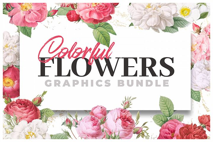 Colorful Flowers Graphics Bundle