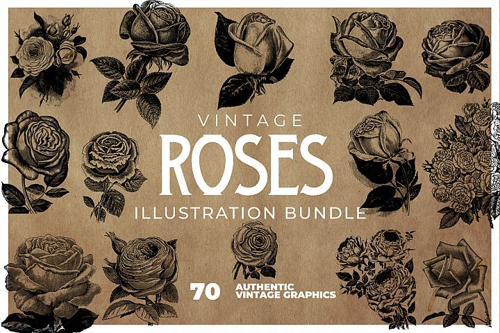70 Vintage Roses Clipart Collection