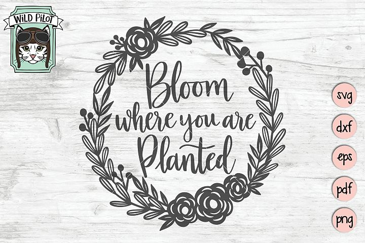 Bloom Where You Are Planted SVG file, Positive Quotes