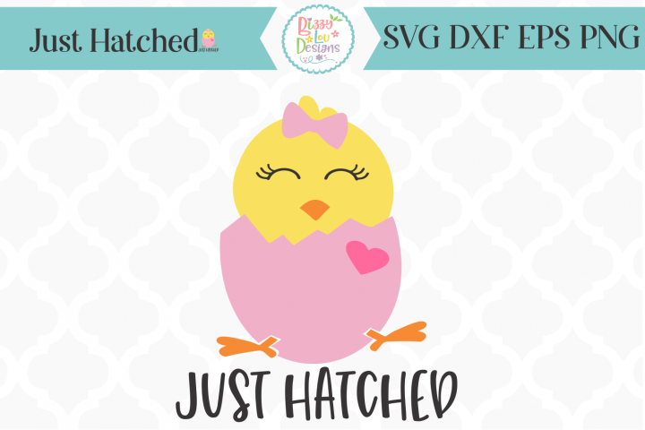Just Hatched Chick SVG I Newborn SVG I Easter SVG I Baby SVG