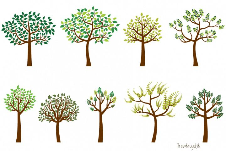 Green leaves trees clipart set, Spring tree clip art