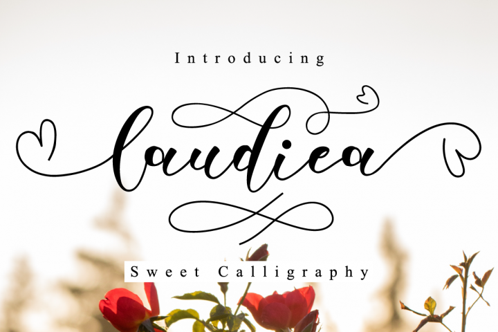 Laudiea Script