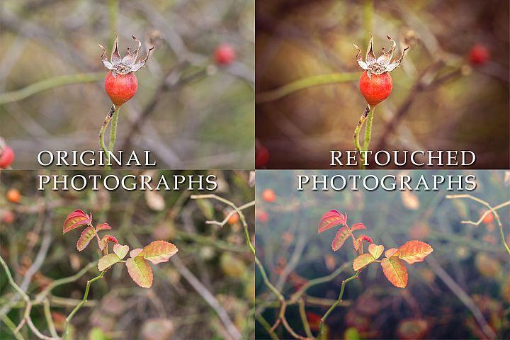 4 cold autumn photos example 2