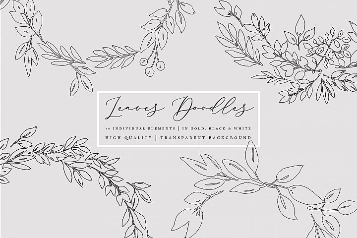 Foliage doodles clip art set, hand drawn foliage, hand drawn