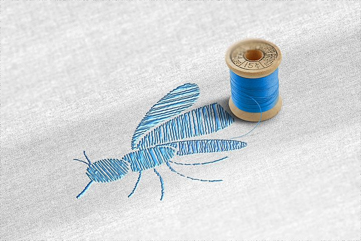 Stitch embroidery mosquito for fabric. Embroidery for jeans