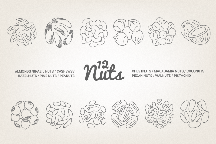 12 Nuts - Illustration & Patterns
