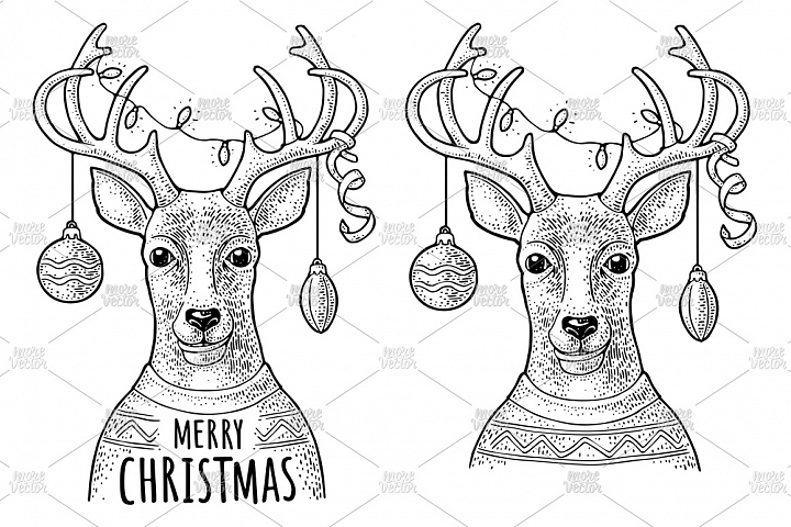 Deer christmas garland dressed sweater. Vintage engraving