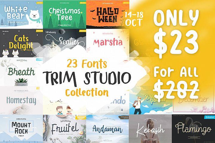Trim Studio Fonts Collection Super Discount Deal!