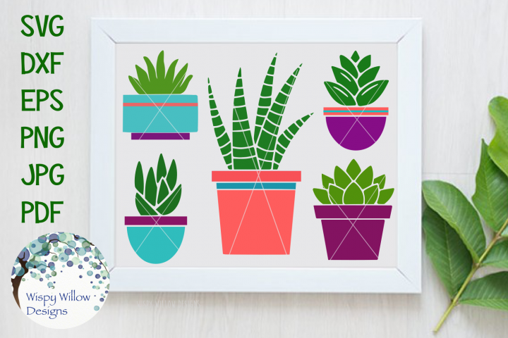 Succulent and Aloe Plant SVG Bundle and Clipart