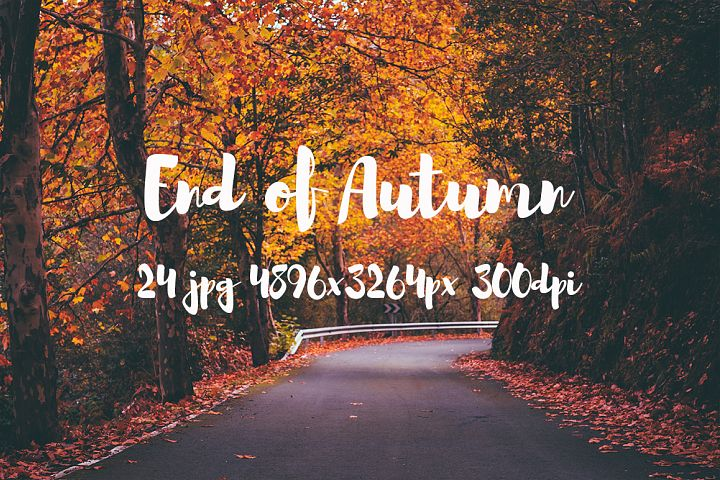 End of Autumn photo pack