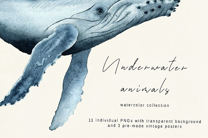 Underwater animals. Watercolor Whale collection