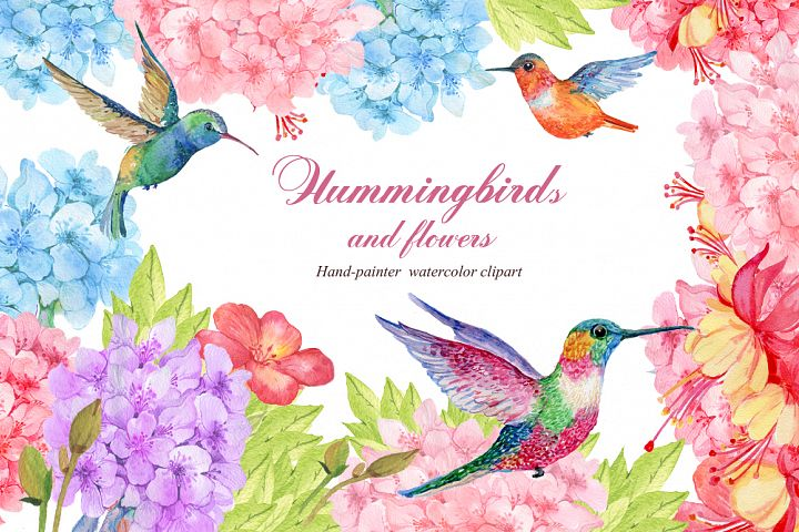 Hummingbird and exotic flowers
