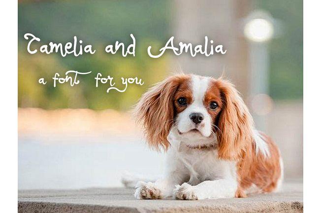 Camalia Girly Typeface
