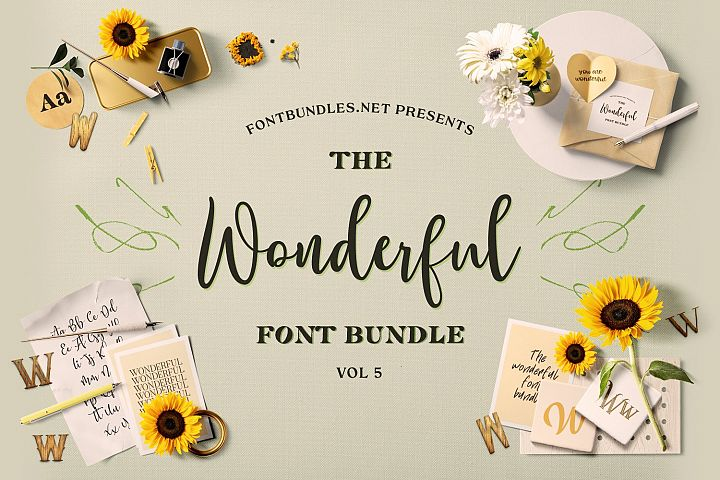 The Wonderful Font Bundle 5 Cover