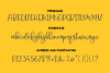 Stinky Cheese Font Duo example image 7
