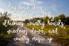 Old Dirt Road - A Rough Rustic Script Font example image 3
