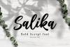 Salika // Bold Script Font example image 11