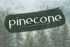 Pinecone - A Rough Handwritten Font example image 1